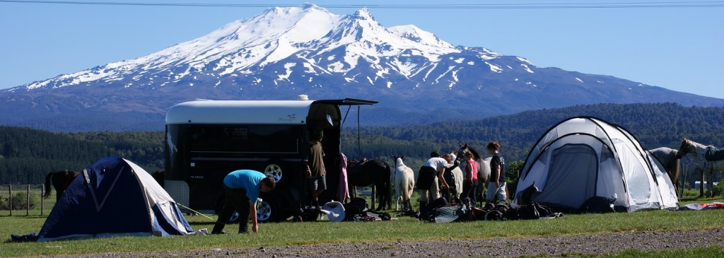 Ruapehu Homestead Homestead Saddle Club picture