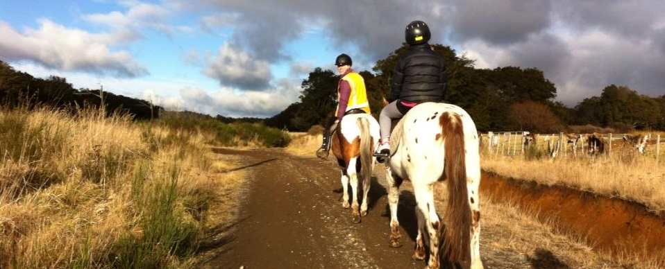 Ruapehu Homestead experienced riders trek picture