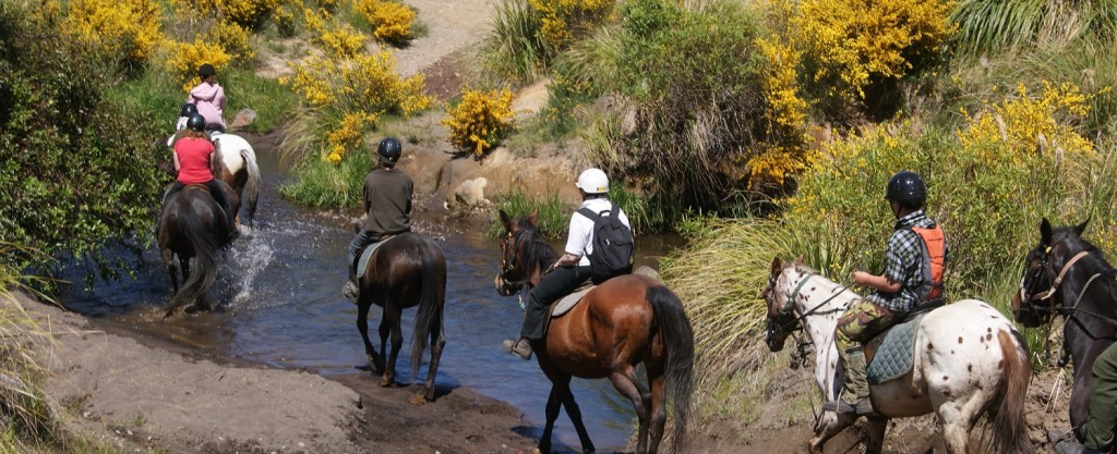 Ruapehu Homestead river trek picture