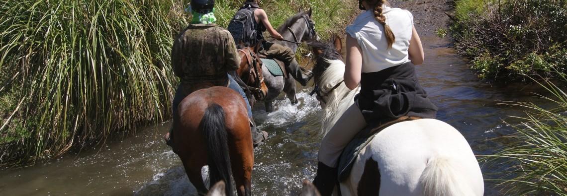 Ruapehu Homestead river trek picture